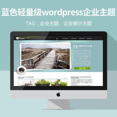 轻量级蓝色企业wordpress主题,企业主题
