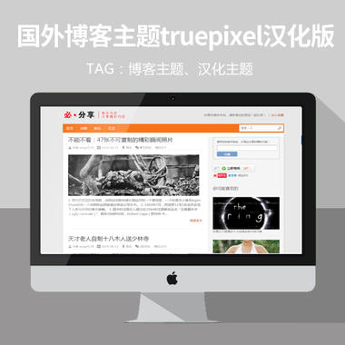 wordpress模板:经典国外博客主题truepixel汉化版