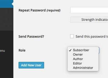 如何修改WordPress默认角色的名称