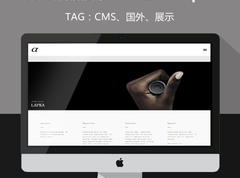 WordPress创意作品展示cms主题–Alpha