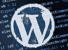 关于 WordPress 的一些学习方法