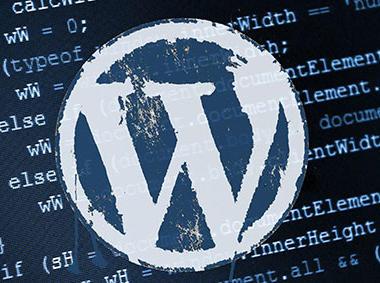 WordPress 4.7可使用255个字符设作为文章密码
