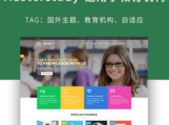 国外主题,适用于教育机构的wordpress主题-Masterstudy