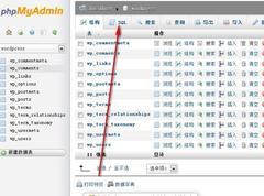 wordpress网站更换域名的一些操作方法