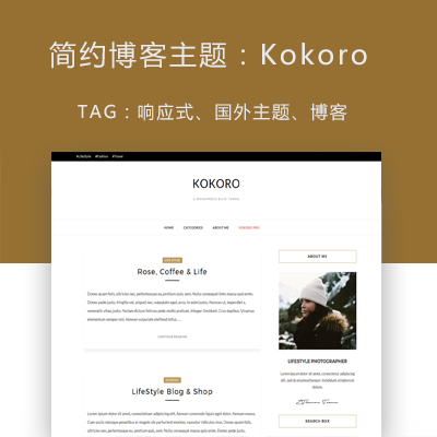 WordPress博客主题:Kokoro