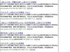 提醒中文WordPress用户 慎用all in one seo类插件