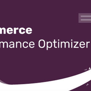WooCommerce Performance Optimizer 商店性能优化插件 – v1.1.4–WordPress插件